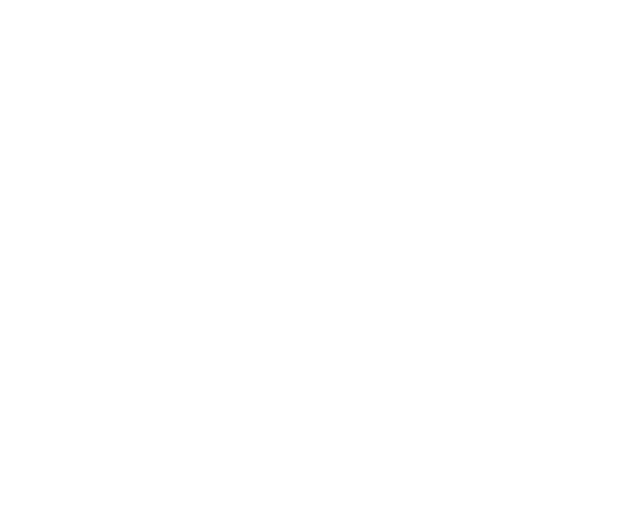 ENERGY EFFICIENT LIGHTS